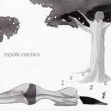 Descargar Panda – Poetics [2009] MEGA