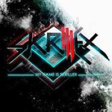 Descargar Skrillex – My name is Skrillex [2010] MEGA