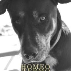 Descargar Caloncho - Homeotermo [2011] MEGA