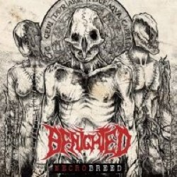 Descargar Benighted - Necrobreed [2017] MEGA