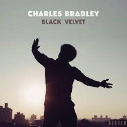 Descargar Charles Bradley – Terciopelo Negro [2018] MEGA