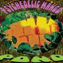 Descargar Pond - Psychedelic Mango [2009] MEGA