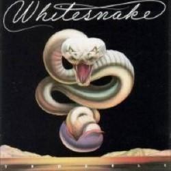 Descargar Whitesnake - Trouble [1978] MEGA
