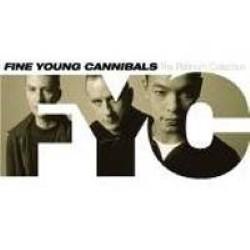 Descargar Fine Young Canniblas - The Platinum Collection [2006] MEGA