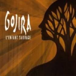 Descargar Gorija - L'Enfant Sauvage [2012] MEGA