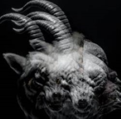 Descargar The Gazette - Beautiful Deformity [2013] MEGA