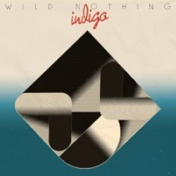 Descargar Wild Nothing - Indigo [2018] MEGA
