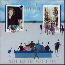 Descargar Peter Frampton - When All the Pieces Fit [1989] MEGA