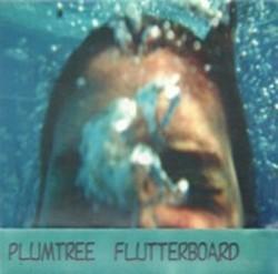 Descargar Plumtree - Flutter board [1994] MEGA
