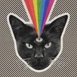 Descargar Never Shout Never - Black Cat [2015] MEGA