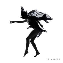 Descargar Siamese - Siamese [2015] MEGA