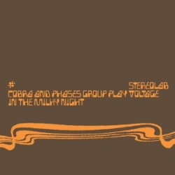 Descargar Stereolab - Cobra and Phases Group Play Voltage in the Milky Night [1999] MEGA