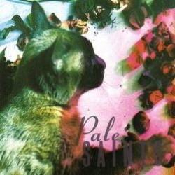 Descargar Pale Saints - The Comforts Of Madness [1990] MEGA
